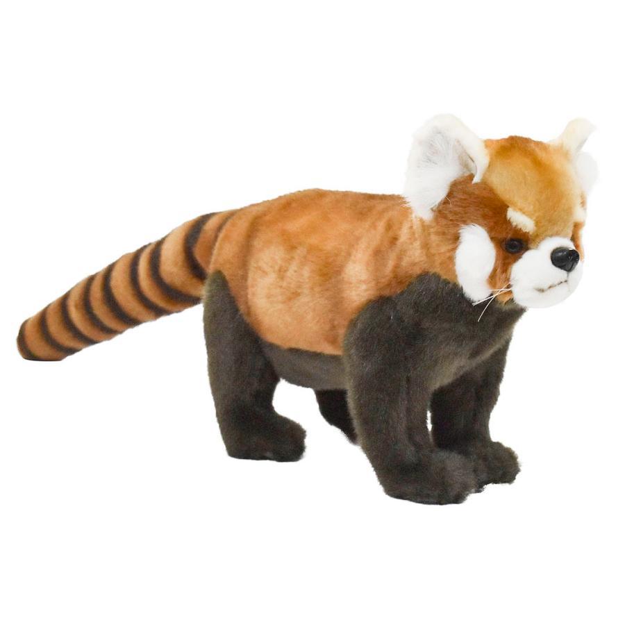 HANSA ハンサ レッサーパンダ 6309 リアル 動物 ぬいぐるみ プレゼント ギフト 母の日 父の日 dearbear