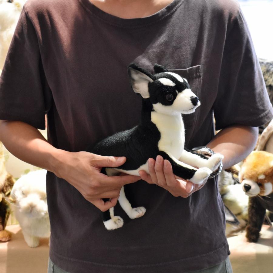 HANSA ハンサ チワワ 犬 6367 リアル 動物 ぬいぐるみ プレゼント ギフト 母の日 父の日 dearbear 08