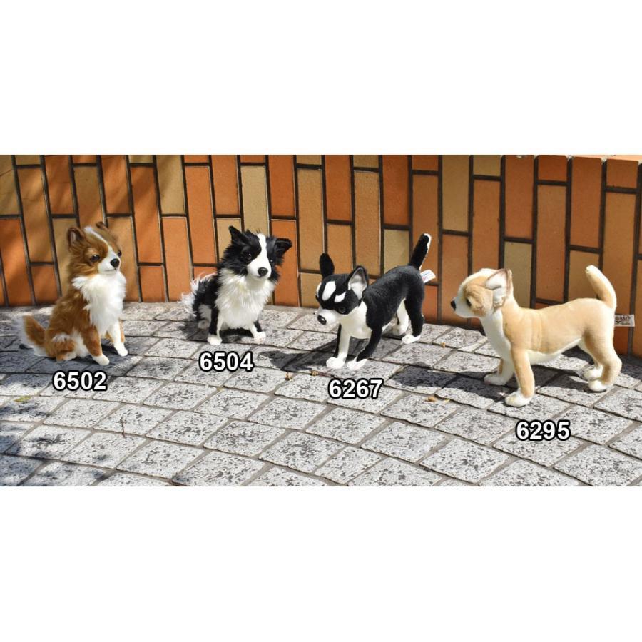 HANSA ハンサ チワワ 犬 6367 リアル 動物 ぬいぐるみ プレゼント ギフト 母の日 父の日 dearbear 09