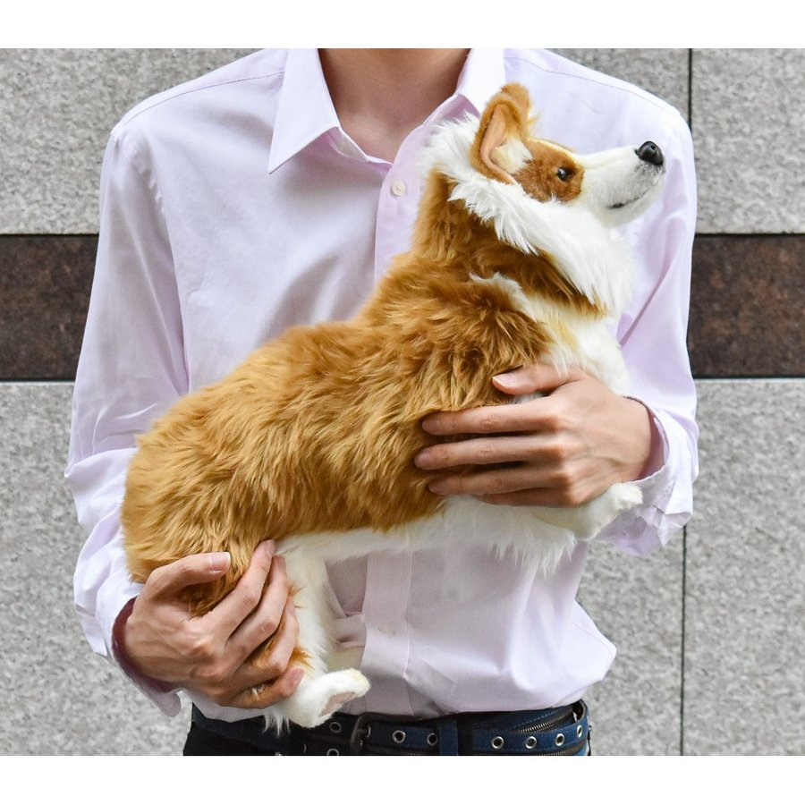 HANSA ハンサ ウェルシュコーギー 犬 6686 ギフト対象外 リアル 動物 ぬいぐるみ プレゼント ギフト 母の日 父の日|dearbear|08