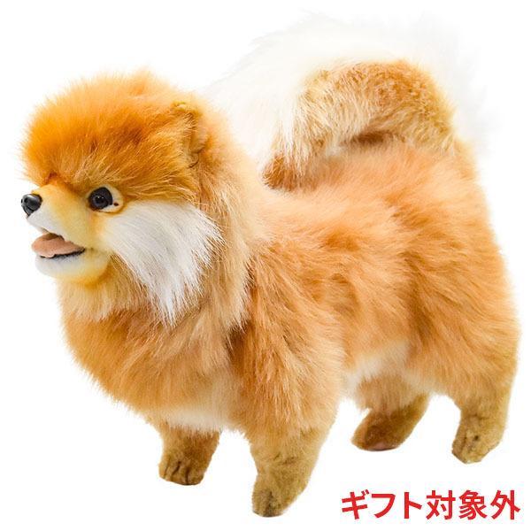 HANSA ハンサ ポメラニアン 犬 7018 ギフト対象外 リアル 動物 ぬいぐるみ プレゼント ギフト 母の日 父の日|dearbear