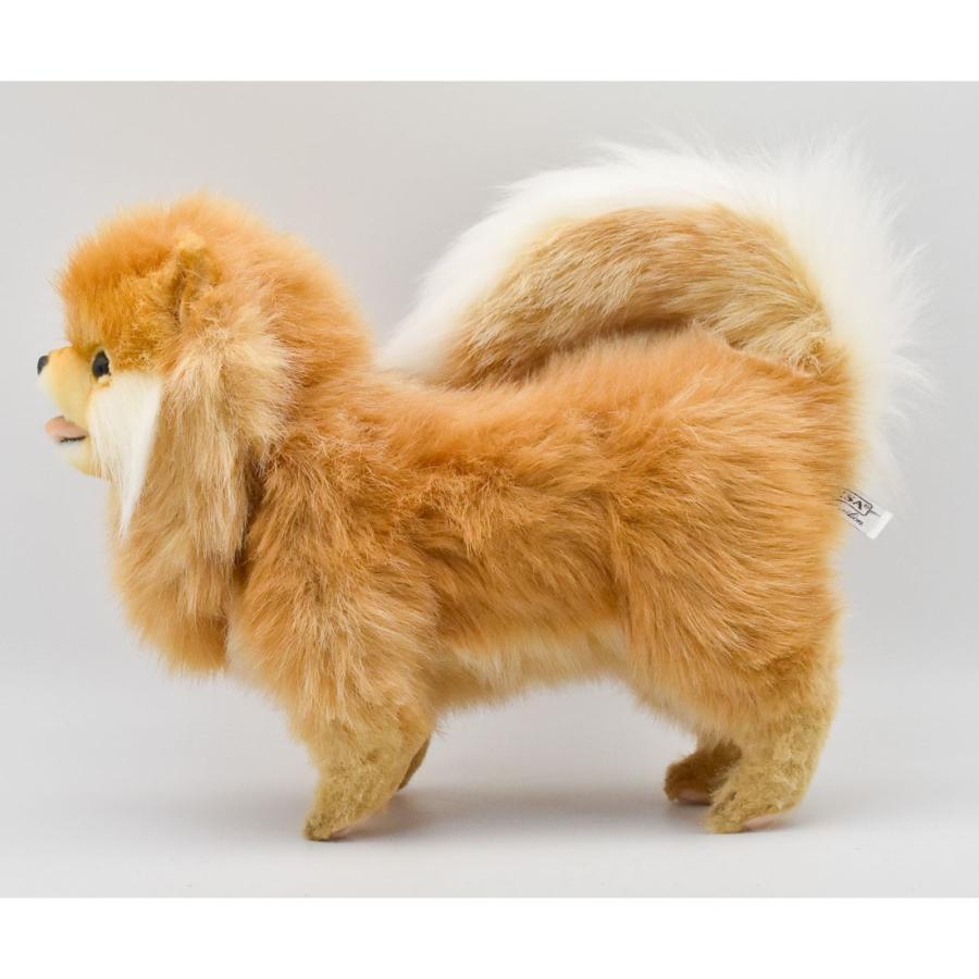 HANSA ハンサ ポメラニアン 犬 7018 ギフト対象外 リアル 動物 ぬいぐるみ プレゼント ギフト 母の日 父の日|dearbear|02