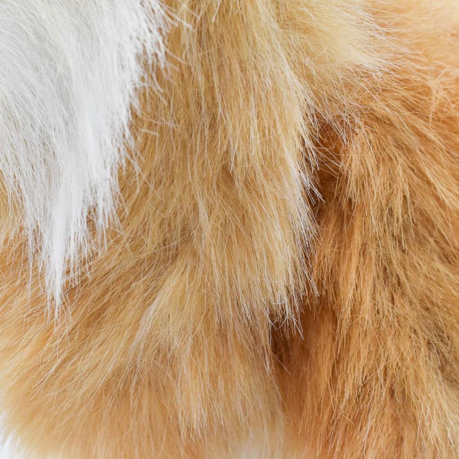 HANSA ハンサ ポメラニアン 犬 7018 ギフト対象外 リアル 動物 ぬいぐるみ プレゼント ギフト 母の日 父の日|dearbear|05