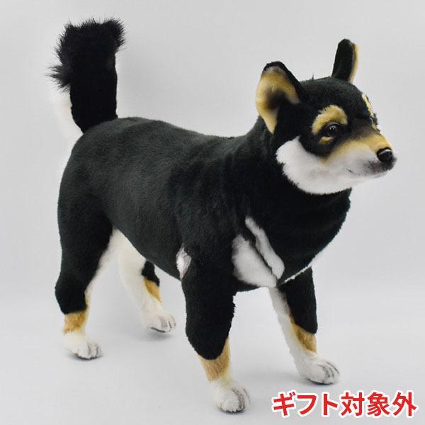 HANSA ハンサ クロシバ 犬 7242 ギフト対象外 リアル 動物 ぬいぐるみ プレゼント ギフト 母の日 父の日|dearbear