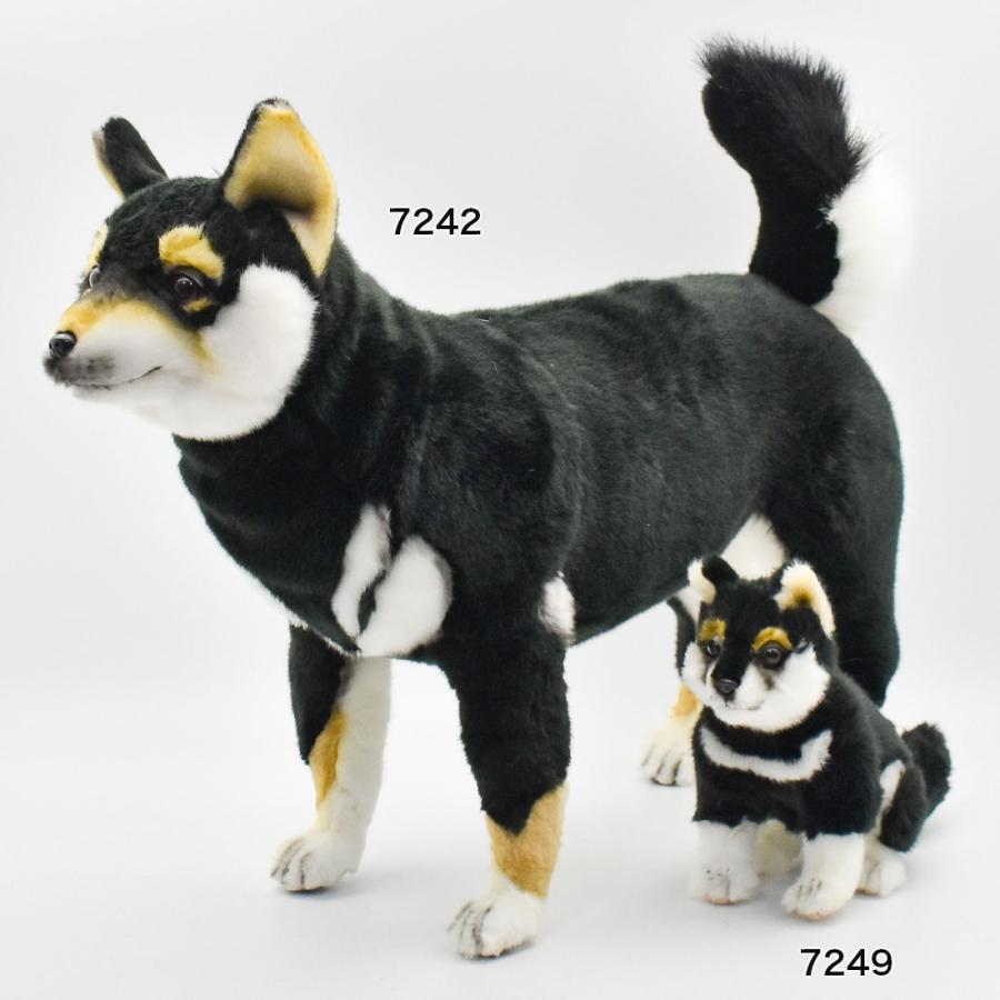HANSA ハンサ クロシバ 犬 7242 ギフト対象外 リアル 動物 ぬいぐるみ プレゼント ギフト 母の日 父の日|dearbear|11