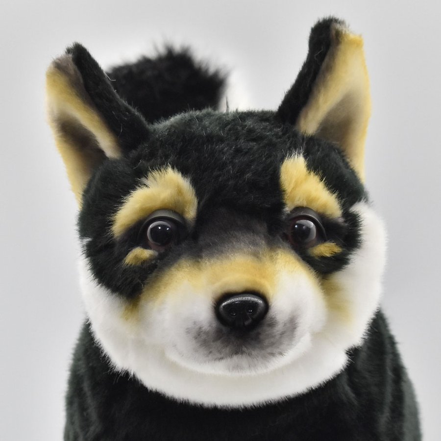 HANSA ハンサ クロシバ 犬 7242 ギフト対象外 リアル 動物 ぬいぐるみ プレゼント ギフト 母の日 父の日|dearbear|04