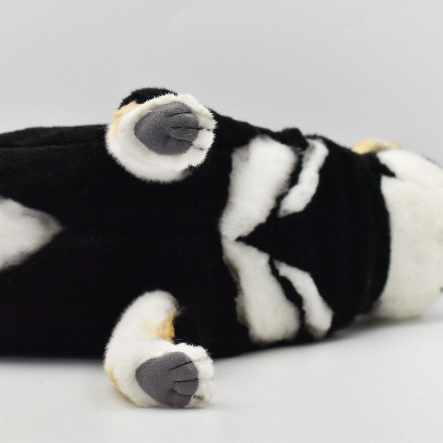 HANSA ハンサ クロシバ 犬 7242 ギフト対象外 リアル 動物 ぬいぐるみ プレゼント ギフト 母の日 父の日|dearbear|07