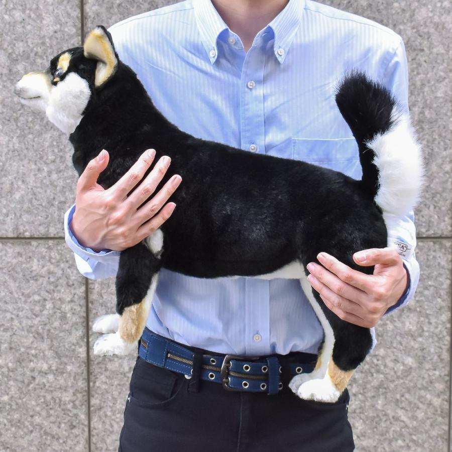 HANSA ハンサ クロシバ 犬 7242 ギフト対象外 リアル 動物 ぬいぐるみ プレゼント ギフト 母の日 父の日|dearbear|10