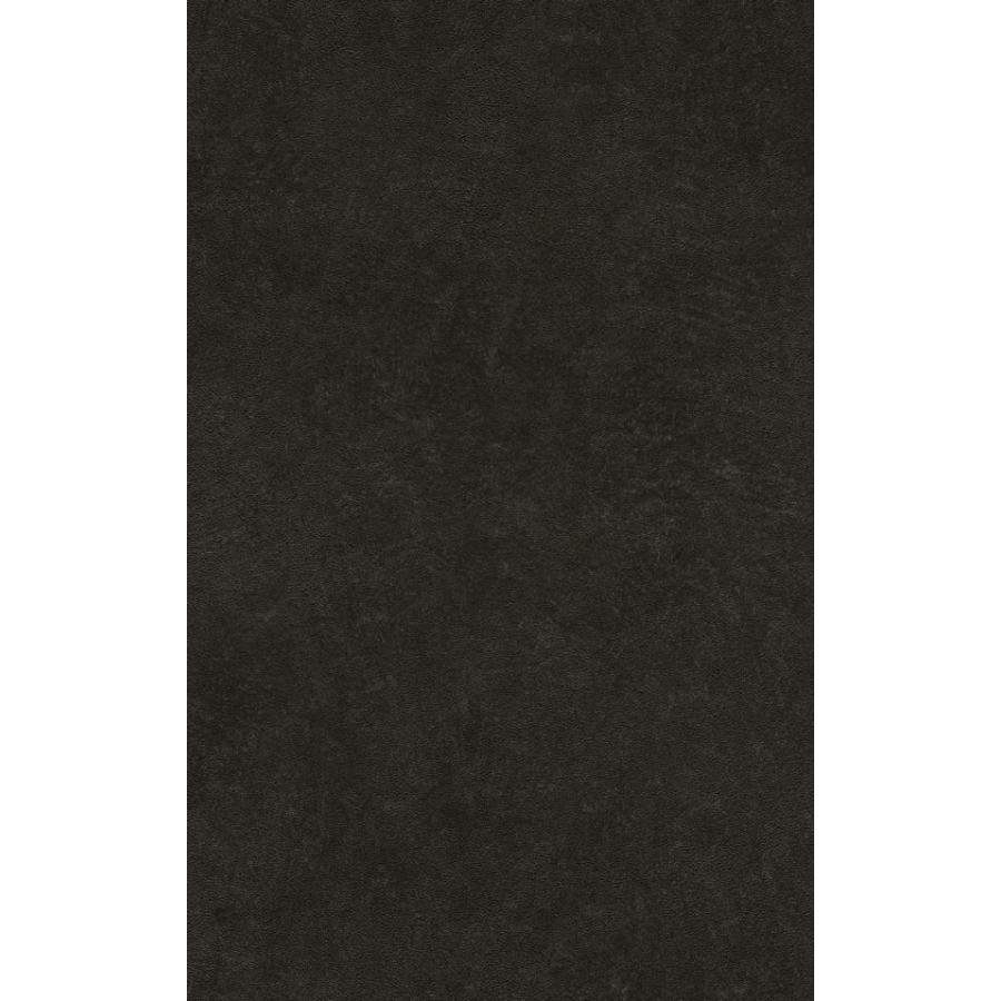 輸入壁紙 rasch2019 ラッシュ 黒 無地 国内在庫品 860160 クロス