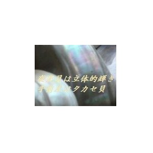 夜光貝プレート deepseawartergm0 06