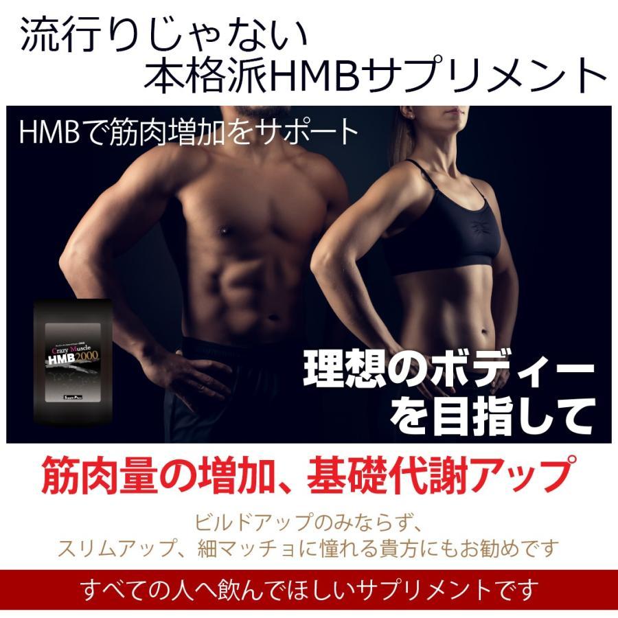 マッスル hmb 効果 ビルド