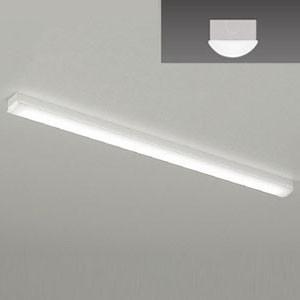 遠藤照明 10台セット LEDベースライト LEDZ SDシリーズ 40Wタイプ 直付型 トラフ形 高効率省エネ 6900lm Hf32W×2灯用 昼白色 ERK9636W+RAD-759N_set