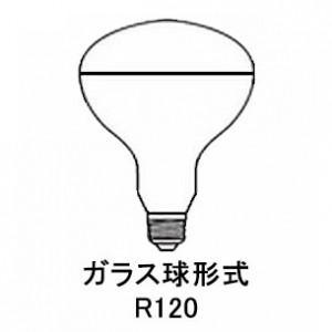 岩崎電気 ケース販売 10個セット 屋外投光用アイランプ 集光形 220V 200W形 E26口金 RS220V180WH_set