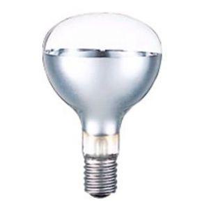 岩崎電気 岩崎電気 ケース販売 10個セット 屋外投光用アイランプ 散光形 110V 300W形 E39口金 RF110V270WH_set