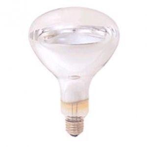 岩崎電気 ケース販売 10個セット アイ R形赤外線電球 220V 250W E26口金 IR220V250WRH_set