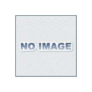 KHK 小原歯車工業 PU2-50J17 融着平歯車 Jシリーズ