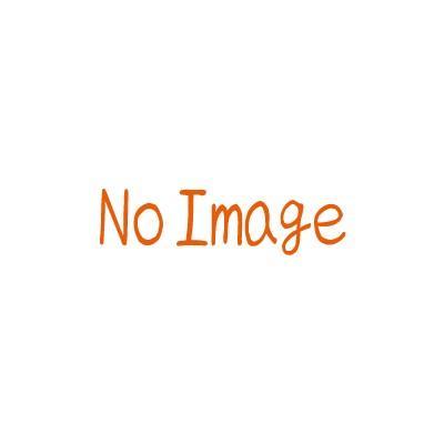 【メーカー直送品・個人宅配送不可】 リンナイ 業務用 ガス赤外線グリラー(下火式) 新荒磯6号 RGA-406C・LPガス用 1コック1バーナー