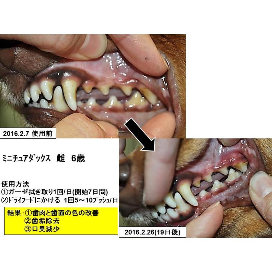 獣医師推奨 DENT@LEAR デンタリア ペット 口臭 口 歯磨き 口臭ケア 口腔ケア|dentalear|04