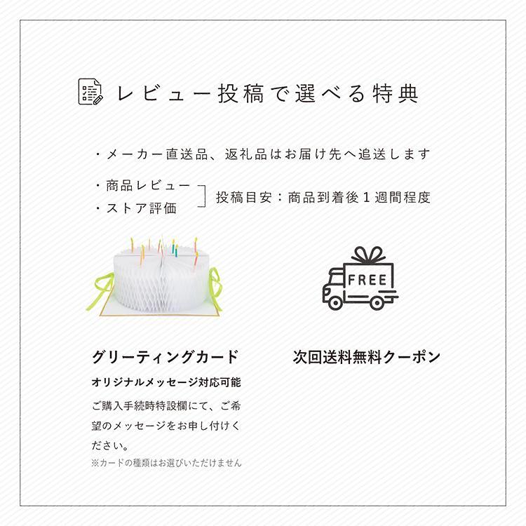 ドゥーナ インファントカーシート&ストローラー  新生児 兼用 出産祝い 【doona公式販売店★】|detour|10