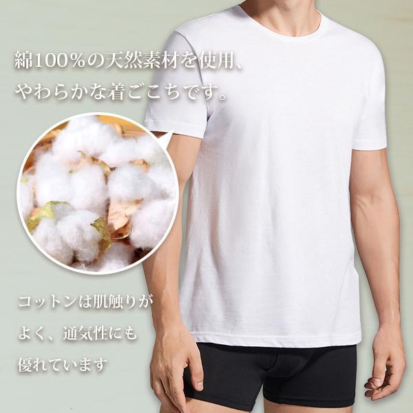 丸首コットンTシャツ 綿100% メンズ半袖 白い 白 無地 ホワイト おすすめ M L LL 直facオリジナル商品 direct-factory 02