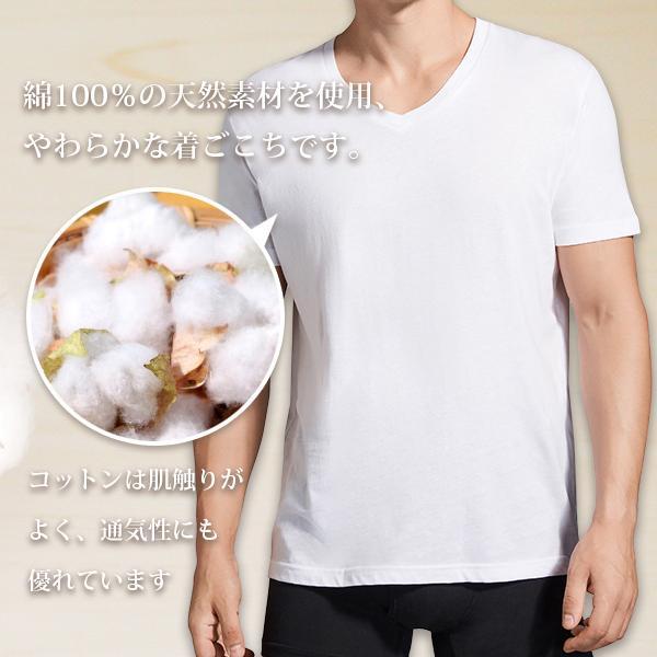 V首コットンTシャツ 綿100% メンズ半袖 白い 白 Vネック 無地 ホワイト おすすめ M L LL 直facオリジナル商品|direct-factory|02