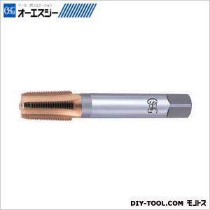 OSG タップ8309319 TIN-LT-TPT H 2 PT1/2-14X150