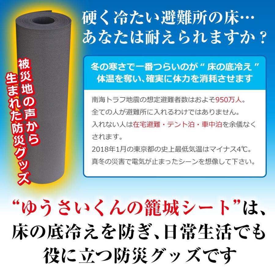 防災グッズ 床用断熱シート ゆうさいくんの籠城シート10m 本当に必要なもの 必需品 最低限 床 底冷え 対策 床用 断熱シート|diystyle|02
