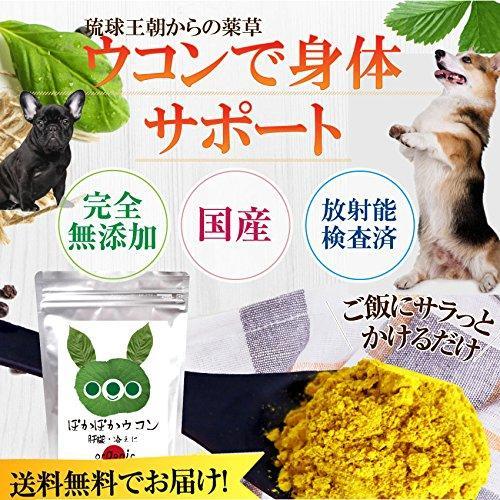犬・猫の肝臓に無添加 サプリ(ぽかぽか ウコン 30g)有機 秋ウコン【送料無料】|dogdiner|02