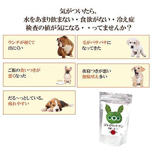犬・猫の肝臓に無添加 サプリ(ぽかぽか ウコン 30g)有機 秋ウコン【送料無料】|dogdiner|03