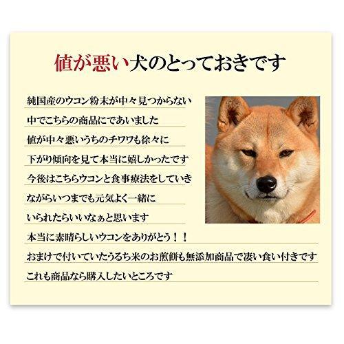犬・猫の肝臓に無添加 サプリ(ぽかぽか ウコン 30g)有機 秋ウコン【送料無料】|dogdiner|06