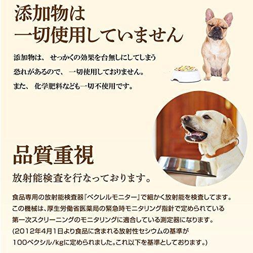 犬・猫の肝臓に無添加 サプリ(ぽかぽか ウコン 30g)有機 秋ウコン【送料無料】|dogdiner|07