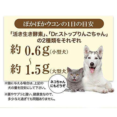 犬・猫の肝臓に無添加 サプリ(ぽかぽか ウコン 30g)有機 秋ウコン【送料無料】|dogdiner|09