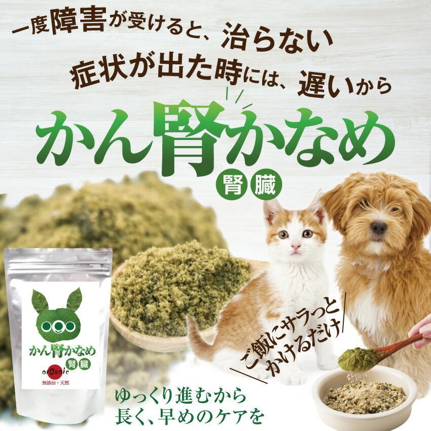 犬・猫用 サプリ(かん腎(腎臓)かなめ)無添加【メール便・送料無料】 dogdiner 02