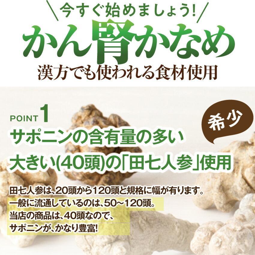 犬・猫用 サプリ(かん腎(腎臓)かなめ)無添加【メール便・送料無料】 dogdiner 12
