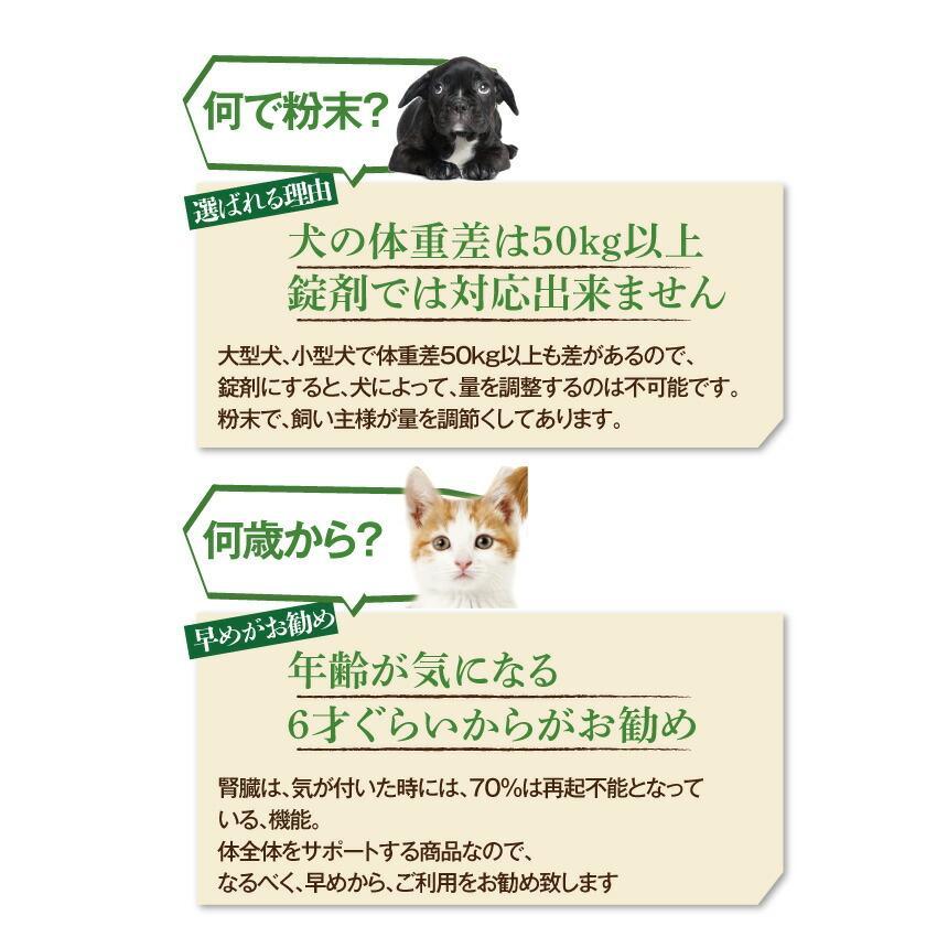 犬・猫用 サプリ(かん腎(腎臓)かなめ)無添加【メール便・送料無料】 dogdiner 17