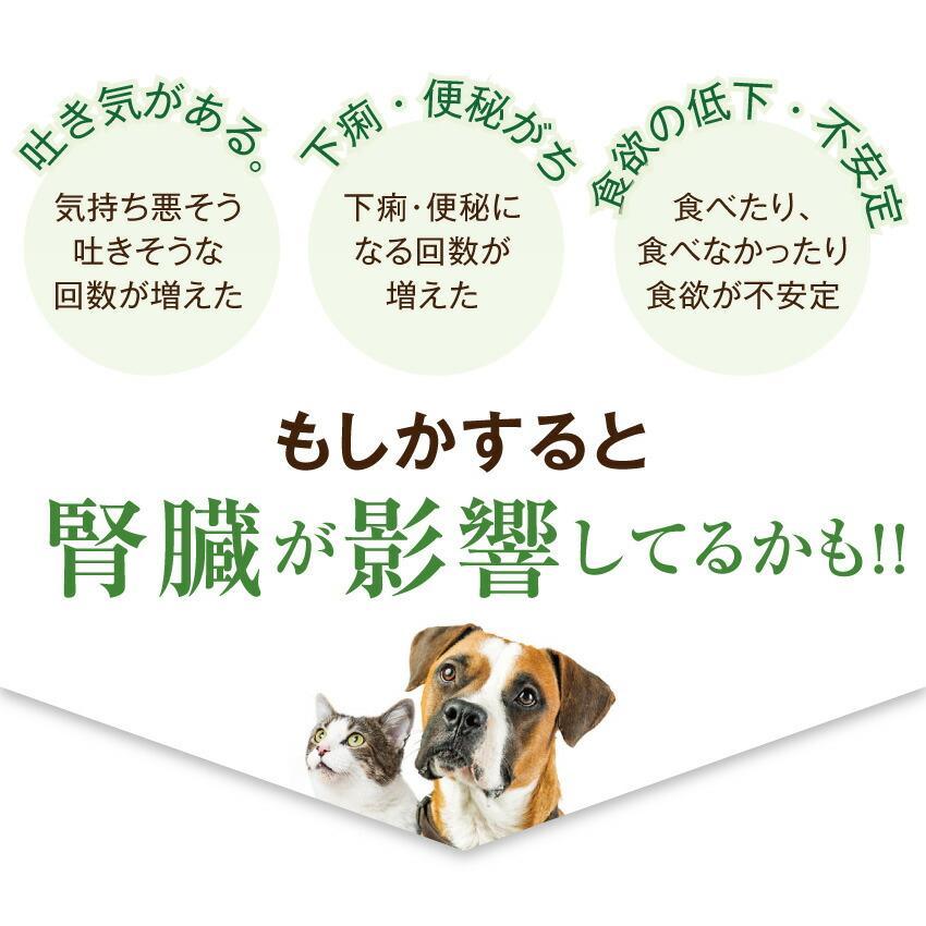犬・猫用 サプリ(かん腎(腎臓)かなめ)無添加【メール便・送料無料】 dogdiner 05
