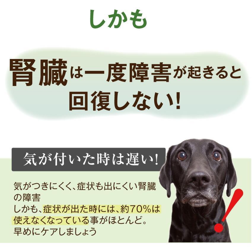 犬・猫用 サプリ(かん腎(腎臓)かなめ)無添加【メール便・送料無料】 dogdiner 07