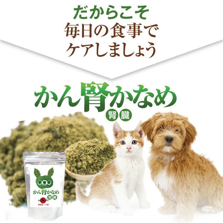 犬・猫用 サプリ(かん腎(腎臓)かなめ)無添加【メール便・送料無料】 dogdiner 09
