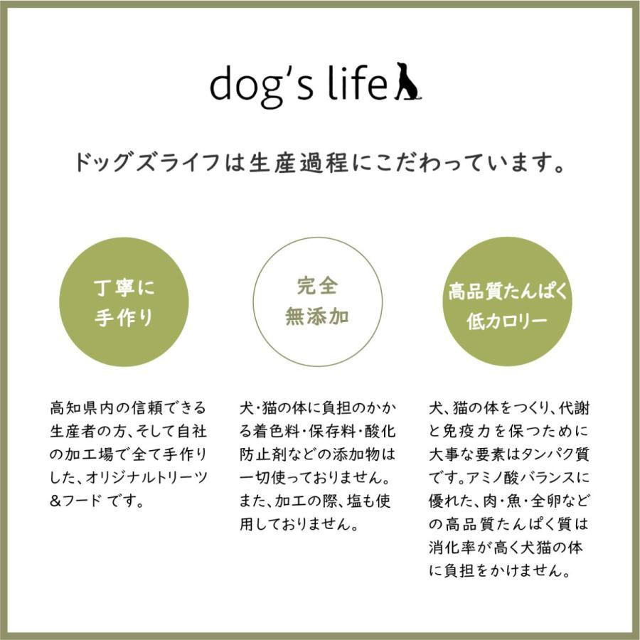 ドッグフード 魚 無塩 無添加 おやつ アレルギー対応 かつお 宗田節スティック 50g|dogslife|12