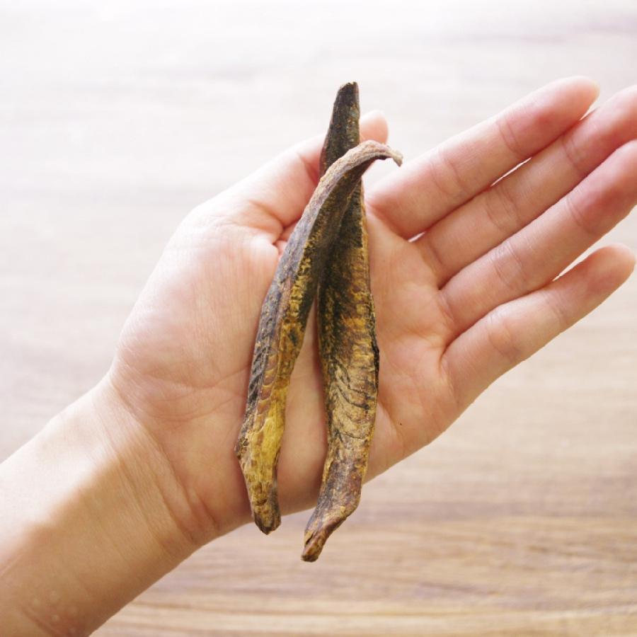 ドッグフード 魚 無塩 無添加 おやつ アレルギー対応 かつお 宗田節スティック 50g|dogslife|05