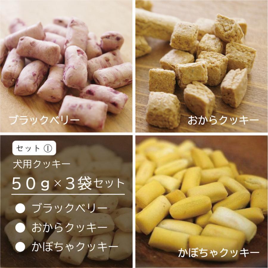 犬用 オリジナル クッキー3点セット おやつ 無添加 国産 ポイント消化 送料無料|dogslife|02