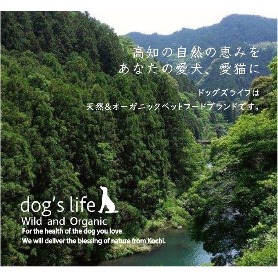 犬用 オリジナル クッキー3点セット おやつ 無添加 国産 ポイント消化 送料無料|dogslife|13