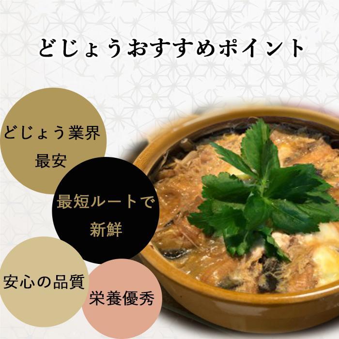 活どじょう 1kg 小小【約7cm 約550匹】 ドジョウ 食用可◎ dojou-ookawa 06