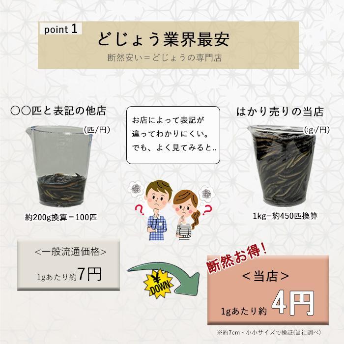 活どじょう 1kg 小小【約7cm 約550匹】 ドジョウ 食用可◎ dojou-ookawa 07