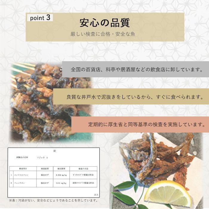 活どじょう 1kg 小小【約7cm 約550匹】 ドジョウ 食用可◎ dojou-ookawa 09