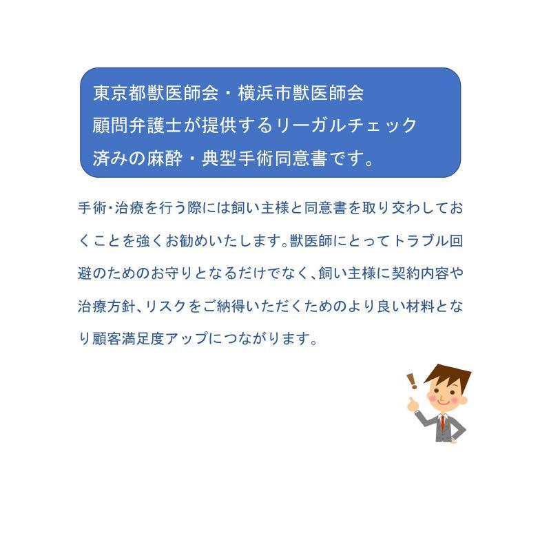 麻酔・典型手術(去勢、避妊、スケーリング、抜歯、乳腺・皮膚腫瘍摘出)用同意書ひな形 douisyo 02