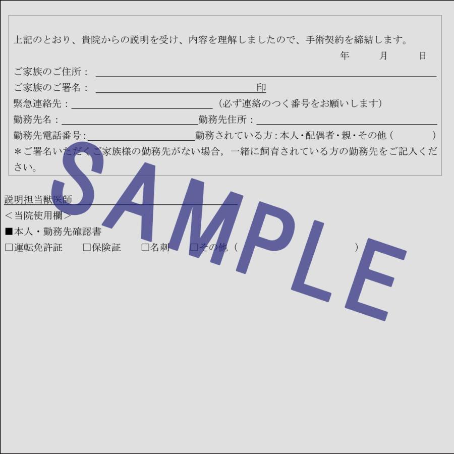 手術契約書(追加措置、蘇生措置の選択付)ひな形|douisyo|03