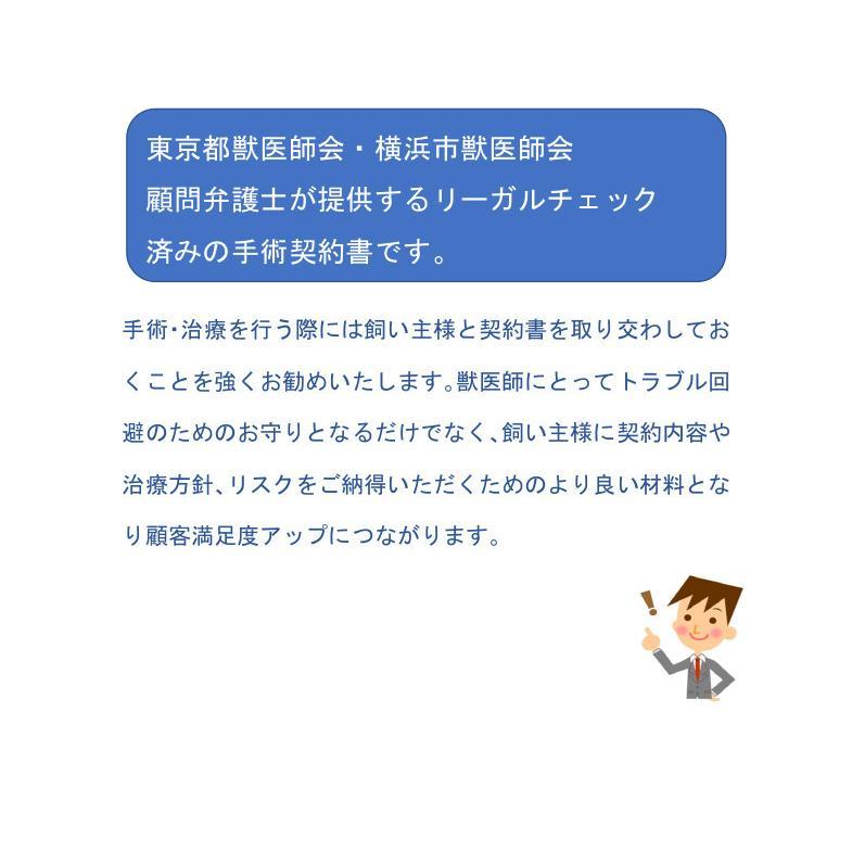 手術契約書(追加措置、蘇生措置の選択付)ひな形|douisyo|05