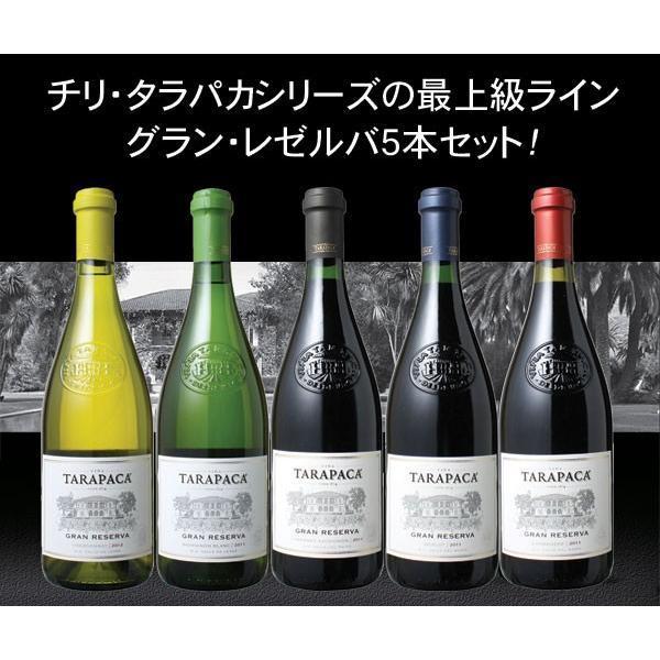 ワインセット 送料無料 タラパカ グラン・レゼルバ5本セット wine