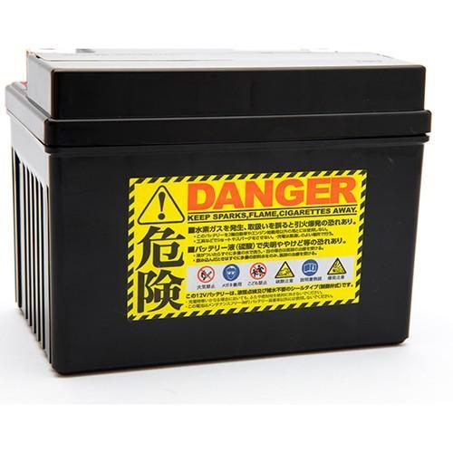 バイク バッテリー CB400SF シグナス スカブ ルネッサ /Pro Select Battery GL-PTX7A-BS (YTX7A-BS 互換)(ジェルタイプ 液入充電済)【取り寄せ】|dream-japan|02